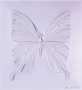 Eternal_Beauty_Lavande-Lavender
