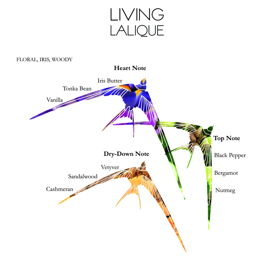 Living_Lalique_olfactive_pyramid_EN